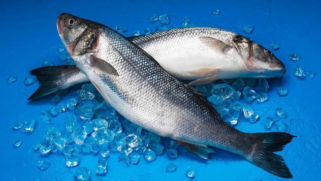 سمك الساباس الشهيرة بـ الأوميغا 3